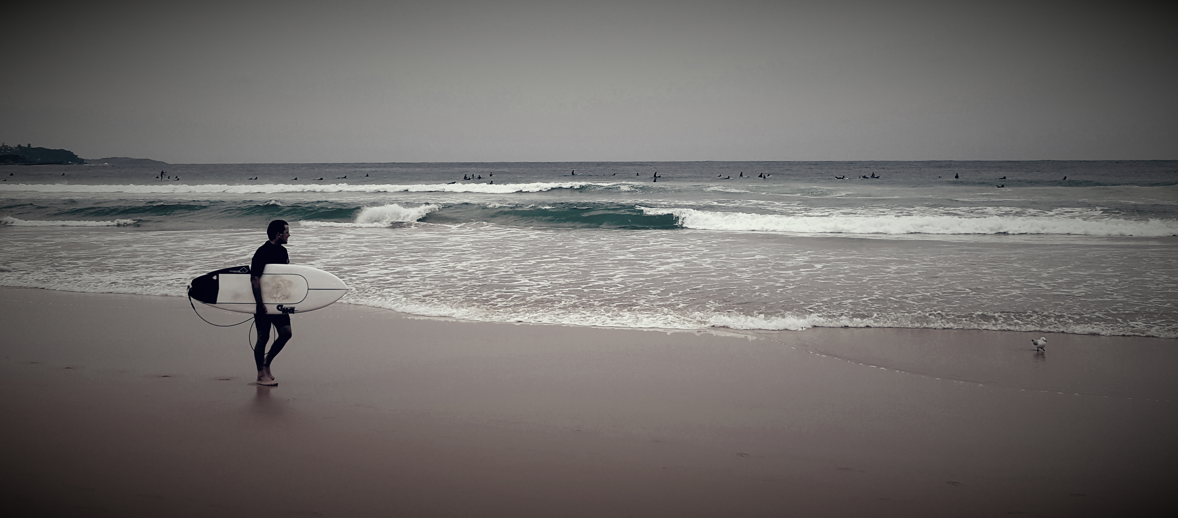 surfersmanlybeach